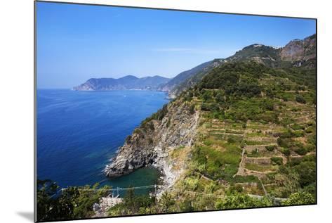 Terraced Vineyards at Corniglia-Mark Sunderland-Mounted Photographic Print