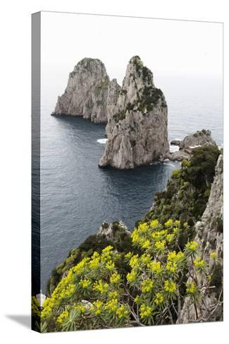 The Rugged Faraglioni Rocks in Capri, Campania, Italy, Mediterranean, Europe-Martin Child-Stretched Canvas Print