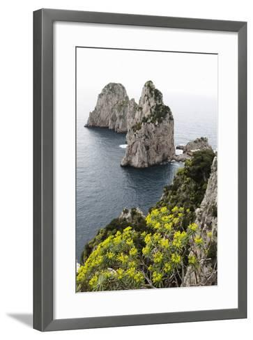 The Rugged Faraglioni Rocks in Capri, Campania, Italy, Mediterranean, Europe-Martin Child-Framed Art Print