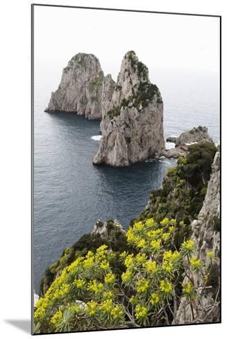 The Rugged Faraglioni Rocks in Capri, Campania, Italy, Mediterranean, Europe-Martin Child-Mounted Photographic Print