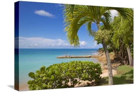 St. Johns, Antigua, Leeward Islands, West Indies, Caribbean, Central America-Frank Fell-Stretched Canvas Print