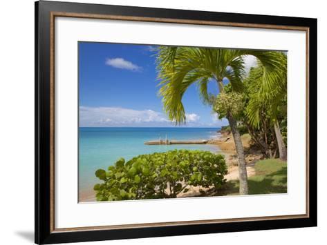 St. Johns, Antigua, Leeward Islands, West Indies, Caribbean, Central America-Frank Fell-Framed Art Print