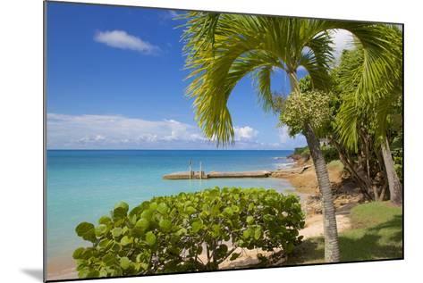 St. Johns, Antigua, Leeward Islands, West Indies, Caribbean, Central America-Frank Fell-Mounted Photographic Print