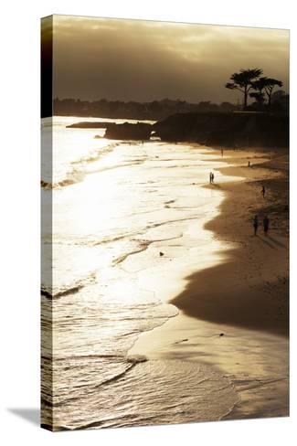 Lighthouse State Beach, Santa Cruz, California, United States of America, North America-Richard Cummins-Stretched Canvas Print