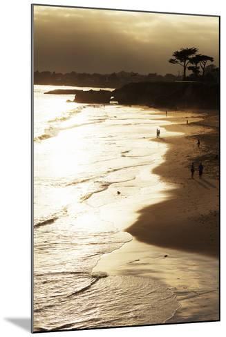 Lighthouse State Beach, Santa Cruz, California, United States of America, North America-Richard Cummins-Mounted Photographic Print