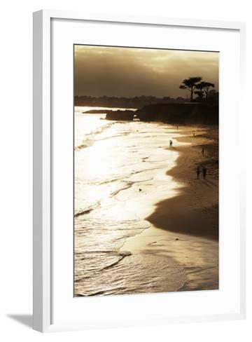 Lighthouse State Beach, Santa Cruz, California, United States of America, North America-Richard Cummins-Framed Art Print