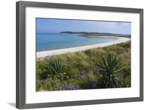 Beach on Tresco Island, Scilly Isles, United Kingdom, Europe-Peter Groenendijk-Framed Art Print