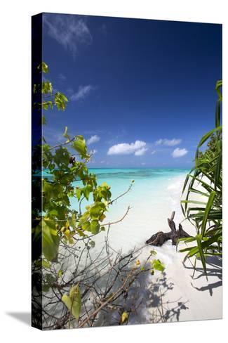 Beach on Desert Island, Maldives, Indian Ocean, Asia-Sakis Papadopoulos-Stretched Canvas Print