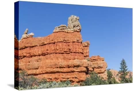 Red Sandstone Formations in Red Canyon-Michael Nolan-Stretched Canvas Print