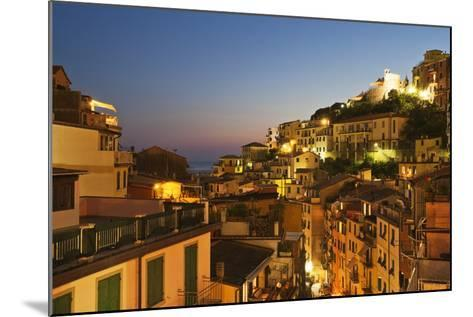 Riomaggiore Rooftops and the Castle at Dusk-Mark Sunderland-Mounted Photographic Print