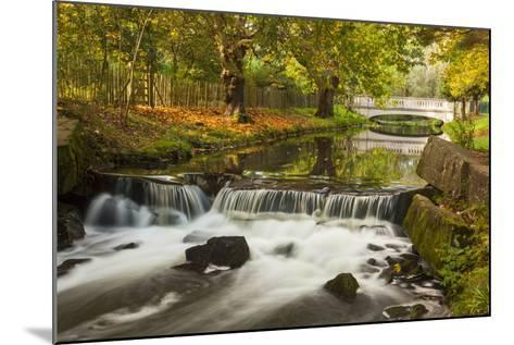 Roath Park, Cardiff, Wales, United Kingdom, Europe-Billy Stock-Mounted Photographic Print