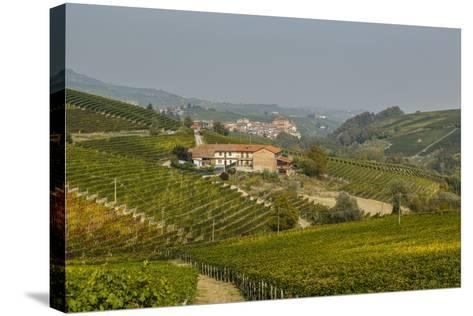 View over Barolo Village and Vineyards, Langhe, Cuneo District, Piedmont, Italy, Europe-Yadid Levy-Stretched Canvas Print