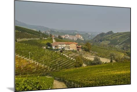 View over Barolo Village and Vineyards, Langhe, Cuneo District, Piedmont, Italy, Europe-Yadid Levy-Mounted Photographic Print
