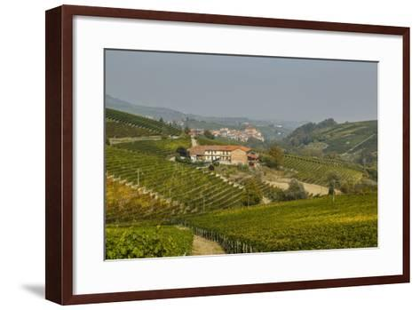 View over Barolo Village and Vineyards, Langhe, Cuneo District, Piedmont, Italy, Europe-Yadid Levy-Framed Art Print