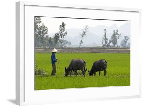 Tam Coc, Ninh Binh Area, Vietnam, Indochina, Southeast Asia, Asia-Bruno Morandi-Framed Art Print
