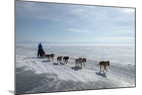 Visitors Enjoying Dog Sledding-Louise Murray-Mounted Photographic Print