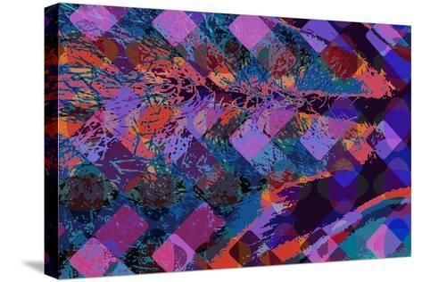Feather-Scott J. Davis-Stretched Canvas Print