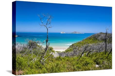 View over Wilsons Promontory National Park, Victoria, Australia, Pacific-Michael Runkel-Stretched Canvas Print