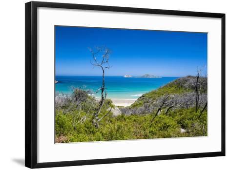 View over Wilsons Promontory National Park, Victoria, Australia, Pacific-Michael Runkel-Framed Art Print