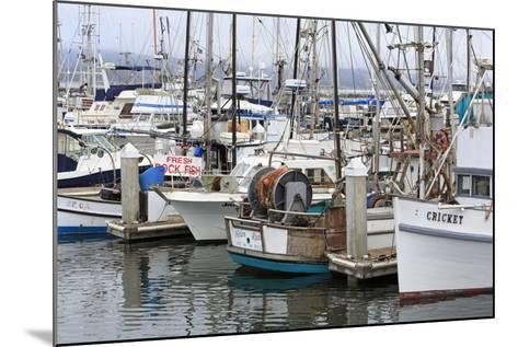 Marina in Pillar Point Harbor, Half Moon Bay, California, United States of America, North America-Richard Cummins-Mounted Photographic Print