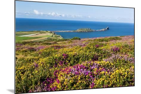 Rhossili Bay, Gower Peninsula, Wales, United Kingdom, Europe-Billy Stock-Mounted Photographic Print