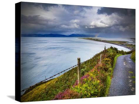 A Country Road Down to Rossbeigh in County Kerry-Chris Hill-Stretched Canvas Print