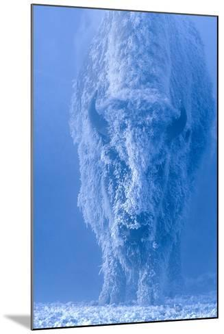 Portrait of a Female Buffalo or Bison with Frozen Snow on its Coat-Tom Murphy-Mounted Photographic Print