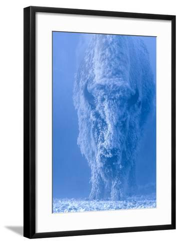 Portrait of a Female Buffalo or Bison with Frozen Snow on its Coat-Tom Murphy-Framed Art Print
