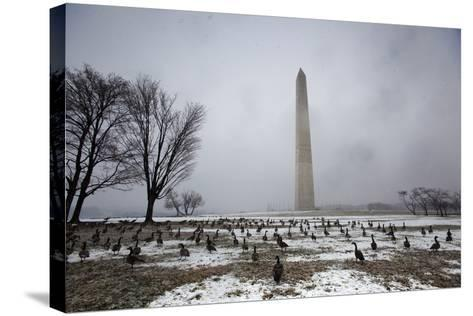 The National Mall Covered in Snow, Washington, DC, USA-Jim Lo Scalzo-Stretched Canvas Print