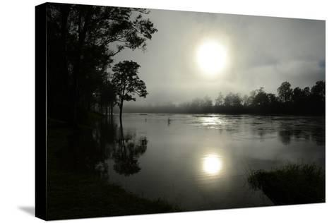 Early Morning Sun Rises Through the Fog over the Swollen Brisbane River-Dan Peled-Stretched Canvas Print