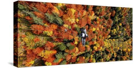 A Paraglider Flying over a Colourful Forest-Dietmar Stiplovsek-Stretched Canvas Print