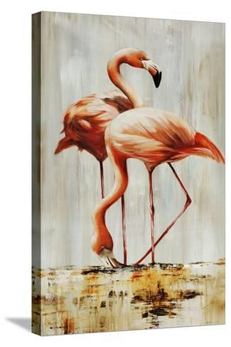 Flamingo V-Sydney Edmunds-Stretched Canvas Print