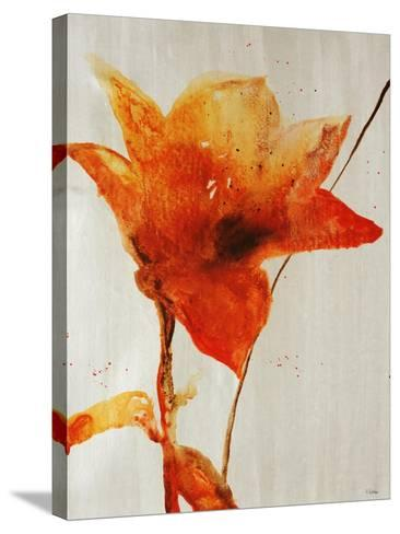 Lillies III-Rikki Drotar-Stretched Canvas Print