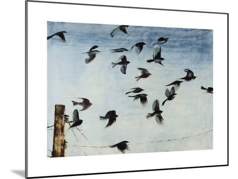 Sparrows-Kari Taylor-Mounted Giclee Print