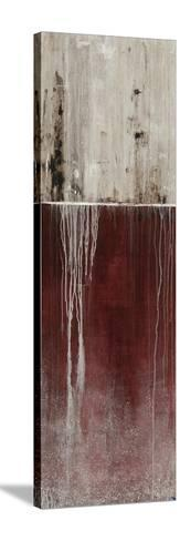 Urban Fringe II-Joshua Schicker-Stretched Canvas Print