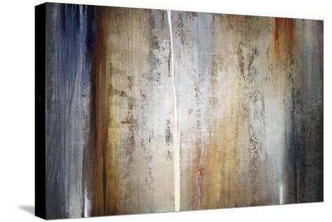 Reminants and Rust-Kari Taylor-Stretched Canvas Print