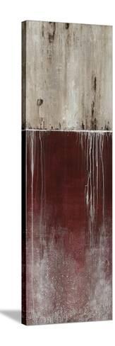 Urban Fringe I-Joshua Schicker-Stretched Canvas Print