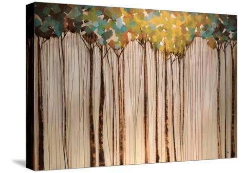 Light in the Leaves-Kari Taylor-Stretched Canvas Print