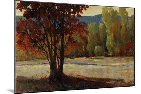 Sign of Fall II-Tim O'toole-Mounted Giclee Print