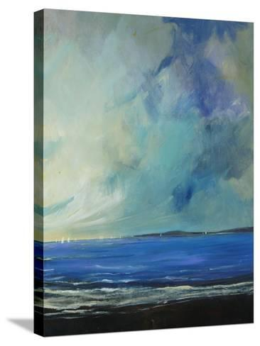 Bay View Scatters-Tim O'toole-Stretched Canvas Print