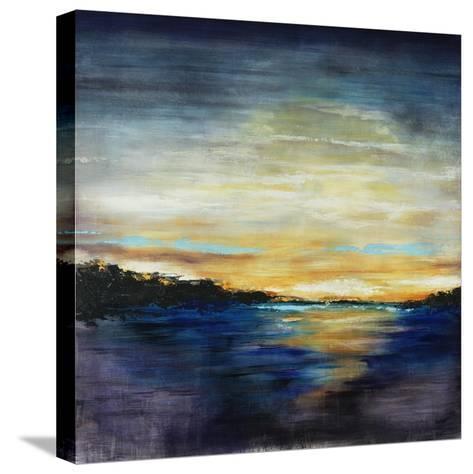 Coastal I-Joshua Schicker-Stretched Canvas Print