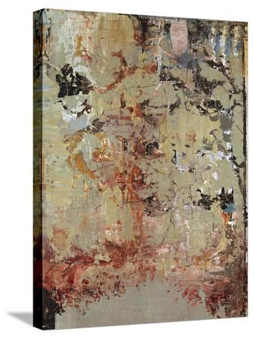 Aged Wall V-Alexys Henry-Stretched Canvas Print