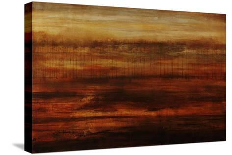 Sandlewood-Joshua Schicker-Stretched Canvas Print