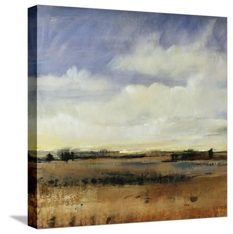 Sky View I-Tim O'toole-Stretched Canvas Print