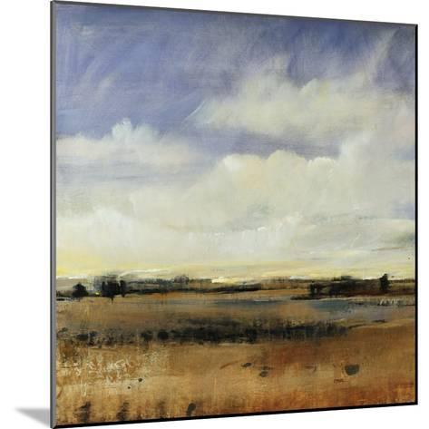 Sky View I-Tim O'toole-Mounted Giclee Print