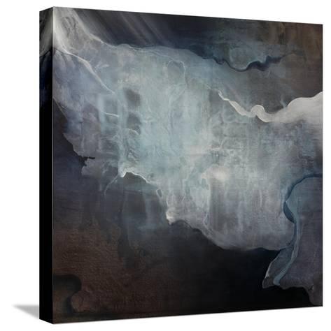 Luminous-Kari Taylor-Stretched Canvas Print