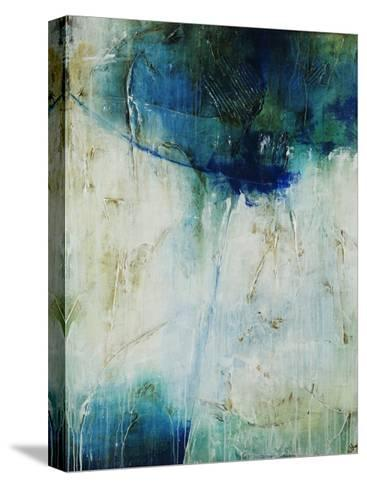 Aerial II-Joshua Schicker-Stretched Canvas Print