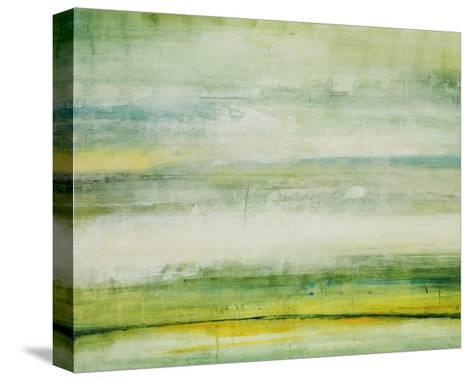 Elements Shift I-Joshua Schicker-Stretched Canvas Print