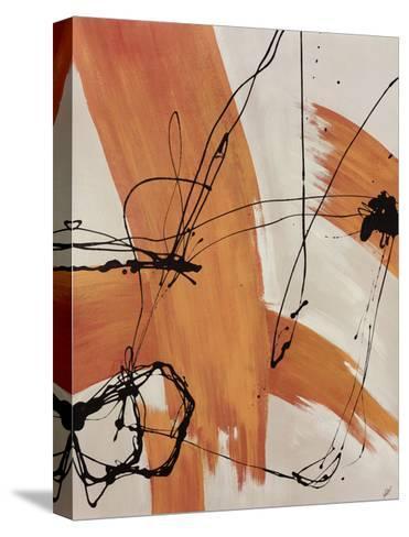 Adaptation-Joshua Schicker-Stretched Canvas Print