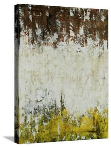 Barnyard-Joshua Schicker-Stretched Canvas Print